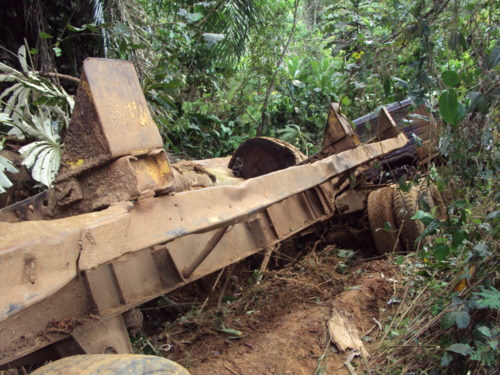 While forestry company trucks destroy Congo's dirt roads, Greenpeace International charges that the companies like Danzer/Siforco underpay or avoid Congo taxes entirely through the creation of offshore companies.